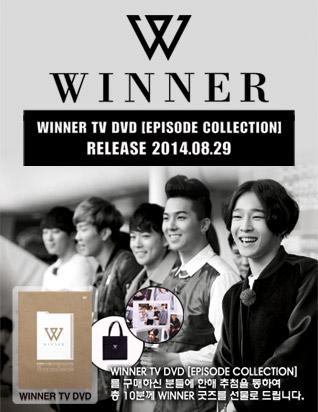 위너 TV DVD (주메인 상)