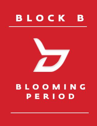 블락비 (BLOCK B) - BLOOMING PERIOD (5TH 미니앨범) [포토카드 1종]