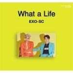 세훈+찬열 (EXO) - 캐시비 교통카드