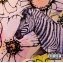 마룬 파이브 - 조르디 (인터내셔널 디럭스 버젼)